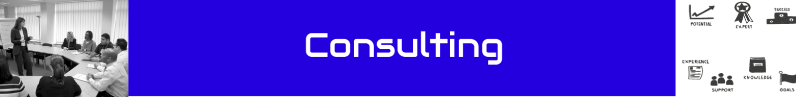 Banner_Consulting_V4